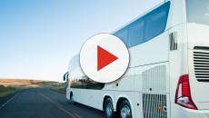 Colisão frontal: ônibus transportando time de futebol se envolve em acidente