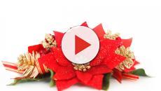 Scopriamo le decorazioni di Natale della Casa più 'Bianca' del mondo