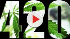 Documental: The Legend of 420 en Netflix