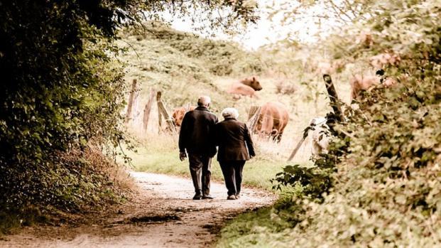 Pensioni: Ultime notizie sul fronte APE e vitalizi