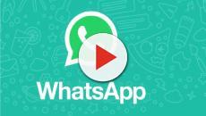 WhatsApp, spiacevoli sorprese per gli utenti: ecco una nuova possibile truffa