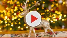 Five simple ways believers can keep Christ in Christmas