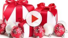 Pandoro natalizio con insetti: la novità gastronomica