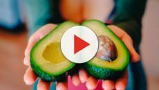VIDEO: Recetas y beneficios del aguacate que no sabías