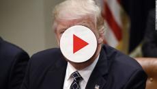 Usa, bloccato il piano di Trump per il rilancio del carbone