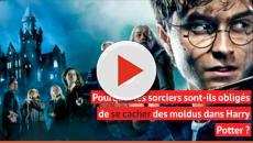 Harry Potter : Le plus gros mystère de la saga enfin dévoilé !