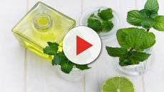 La aromaterapia ayuda a mejorar la salud