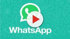 WhatsApp nuove funzionalità in arrivo