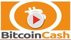 Crolla il Bitcoin, -40% in un mese: le attuali quotazioni e ultime novità