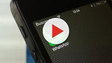 ¡WhatsApp está probando alertas para evitar el spam!