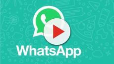 Spam e fake news, una nuova funzione di WhatsApp potrebbe dire basta