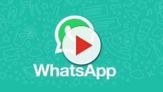 Whatsapp: nuovo aggiornamento in arrivo, ecco quale
