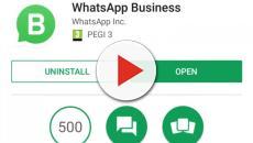 WhatsApp Business in Italia, primo passo di una rivoluzione
