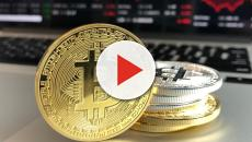 Cryptocurrency massacre -- Where is the bottom?