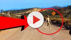 Ufo ripreso in Messico con un telefono cellulare