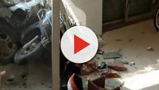 A Yangzhou, in Cina, si aggira un uomo colpevole di aver ucciso almeno sei cani