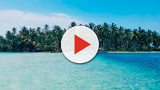 VIDEO: Supervivientes 2018: todos los posibles concursantes de la edición
