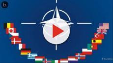 Assista: OTAN oferece inúmeras vagas para brasileiros em diversos países