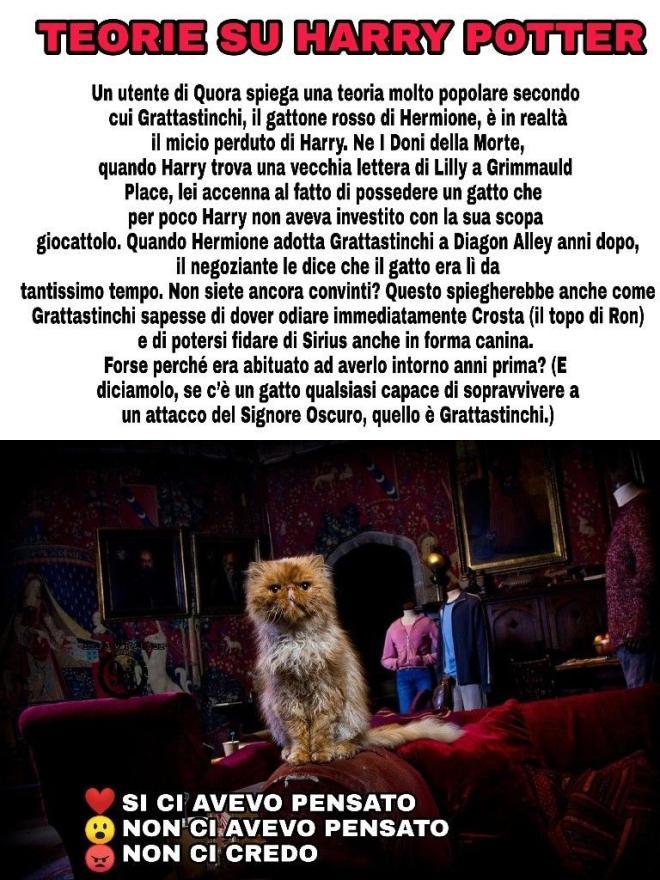 Harry Potter 5 Meme Divertenti 4