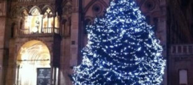 Albero di Natale a Ferrara, Cattedrale
