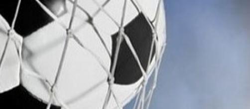 Coppa Italia Fiorentina - Siena 2-1