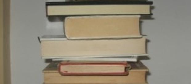 libri di vario spessore disposti in colonna