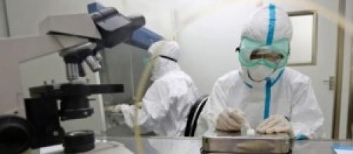 Científicos del Instituto Malbrán contra el ébola.