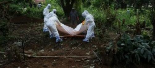 El ébola podría llegar a Argentina.