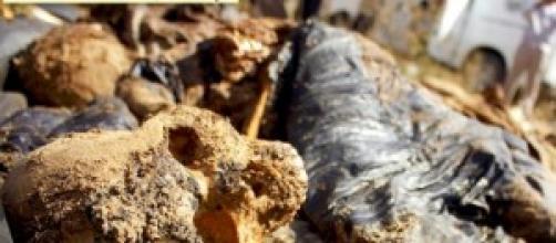 Restos humanos hallados en fosas clandestinas