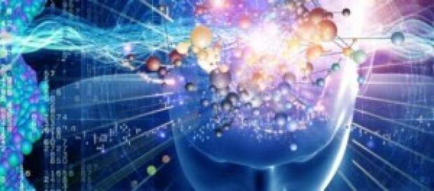 El cerebro es un lugar muy inexplorado