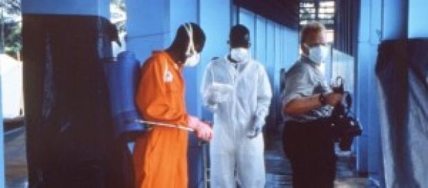 El ébola llega a Mali y a Nueva York.
