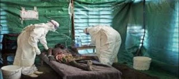 Virus cada vez más letales invaden a humanos