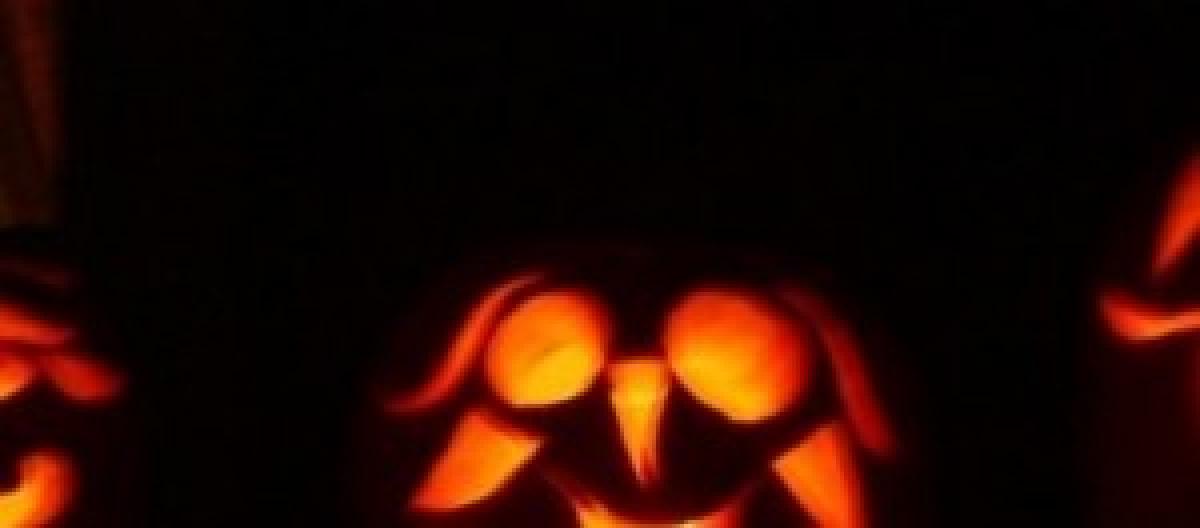 Halloween 2014 15c7385648ed