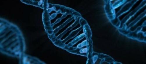 Rappresentazione del DNA umano