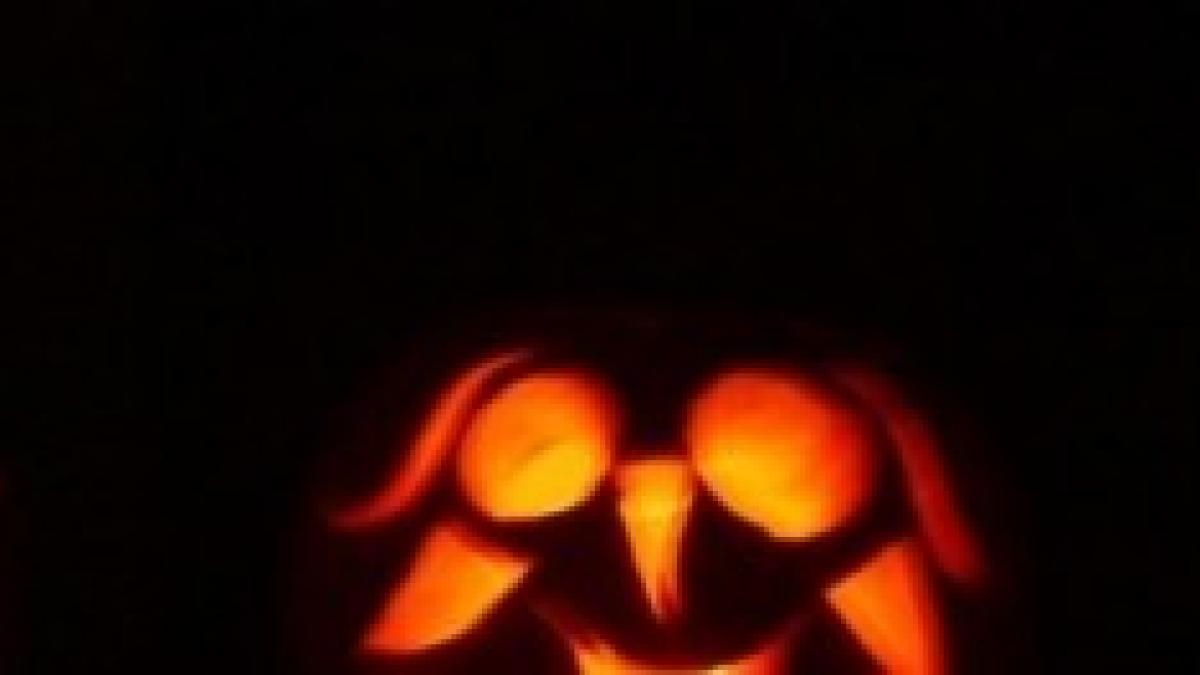 Il Significato Di Halloween.Halloween Significato Esoterico Della Festa