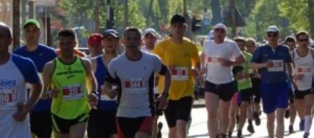 Maratón de Nueva York edición no. 44