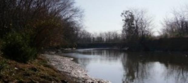 Río Lujan: mucha vegetación, y pocas defensas.