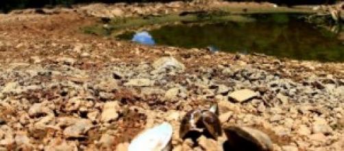 Crise Hídrica: a falta de chuva seca reservatórios