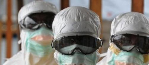 Virus Ebola 2014: nuove scoperte