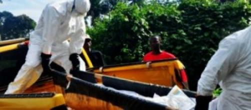 As mortes por Ébola podem começar a diminuir.