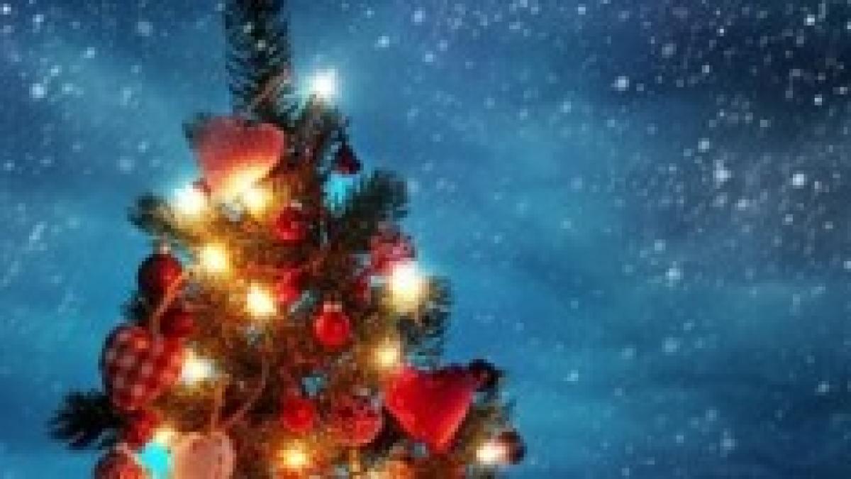 Regali Di Natale Che Costano Poco.Regali Di Natale 2014 Idee Regalo A 20 Euro Per Stupire Fidanzato E