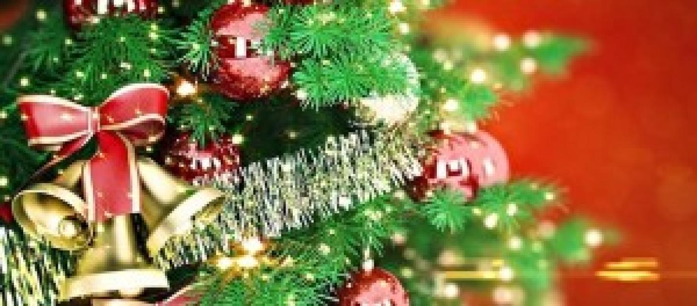 Natale 2014 5 idee naturali per addobbare l 39 albero - Idee per decorare l albero ...