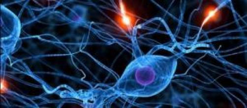 Red neuronal, visto en 3 dimensiones