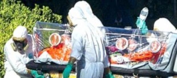 Virus Ebola: è ufficiale è giunto in Italia