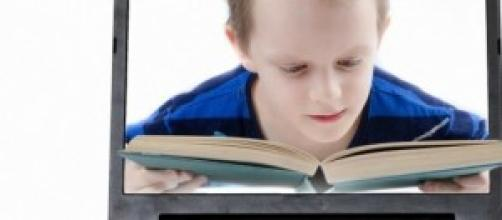 Amplias bibliotecas se instalan en España