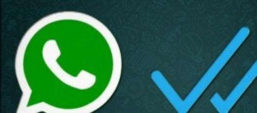Nueva función de Whatsapp