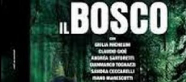 Il Bosco, anticipazioni prima puntata del 17/11