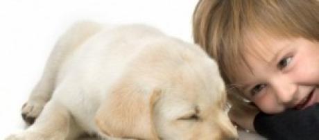 Animais de estimação promovem o bem-estar