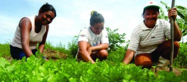 Juventude rural potiguar será atendida