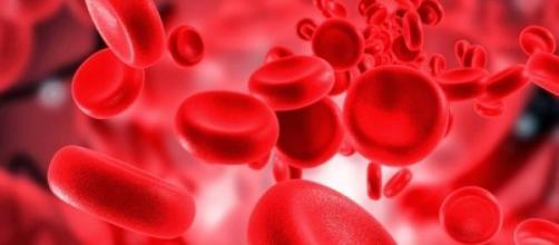 Hemoglobinas: células responsáveis pela oxigenação